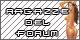 Ragazze del forum