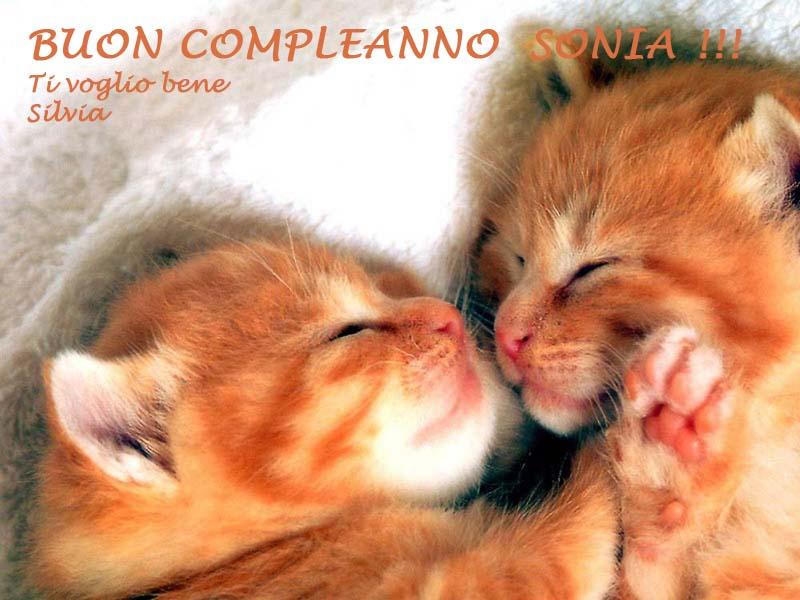 Buon Compleanno Sonia Www Ancorassieme Net Forum