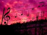 La musica che amo